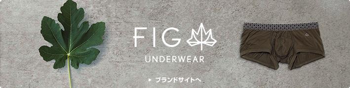FIG / �ե���