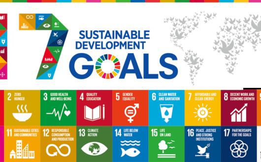 Sustainable Development Goals(サステイナブル・デベロップメント・ゴールズ)